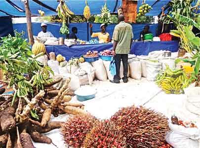 Lagos farmer market
