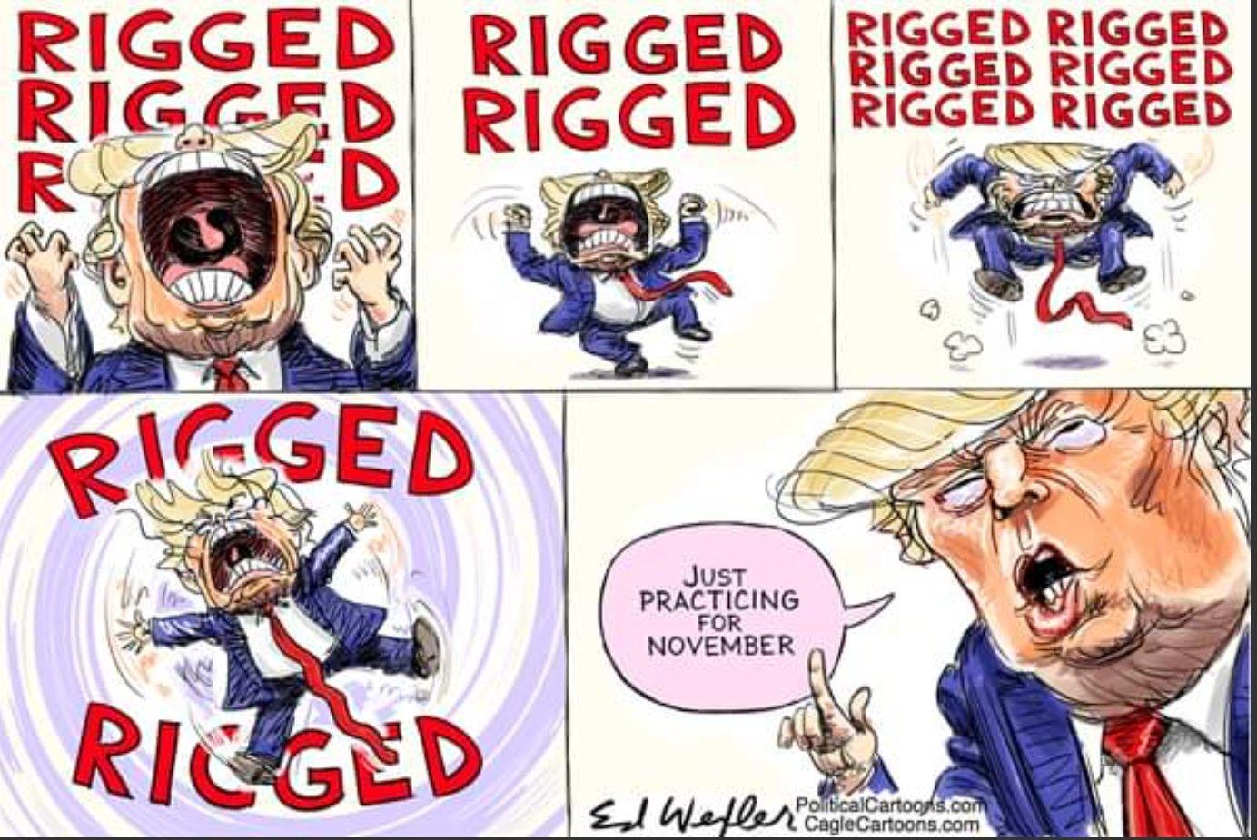 Trump election call